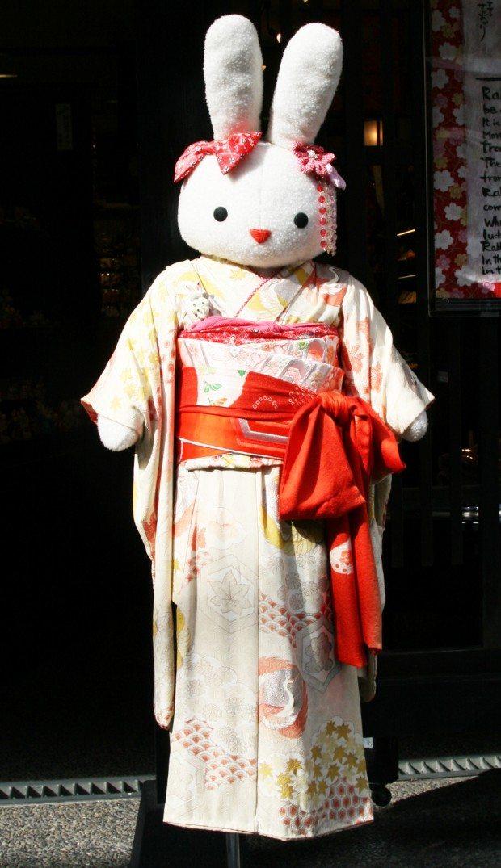Kimono Bunny