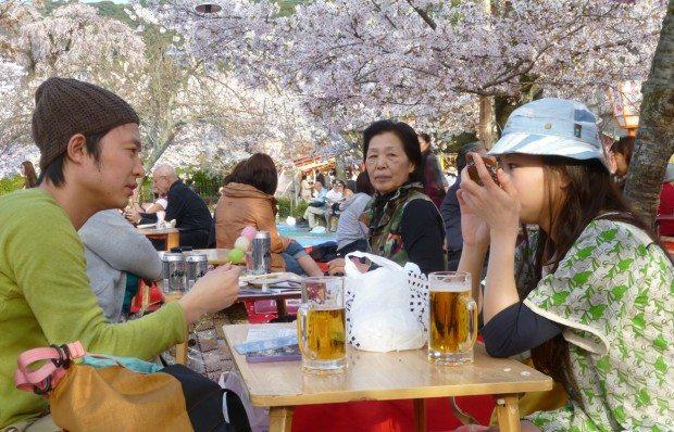 Maruyama Park Pop Up Restaurants