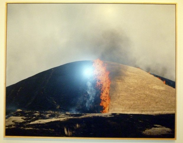NEW YORK ART RINKO KAWAUCHI at APERTURE