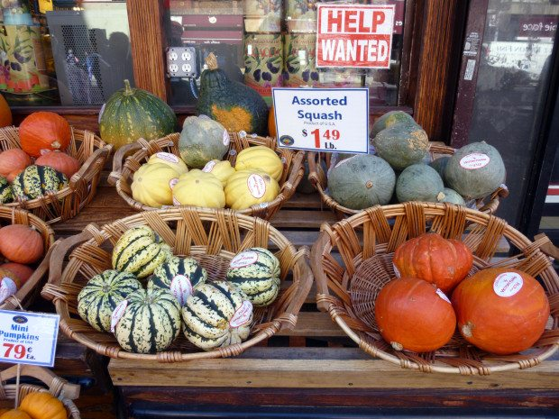 NEW YORK SHOPPING-SQUASHES