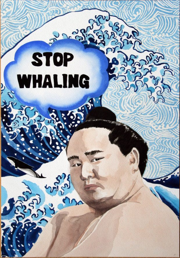 Stop Whaling Sumo