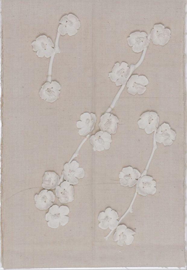 The Blossom Book