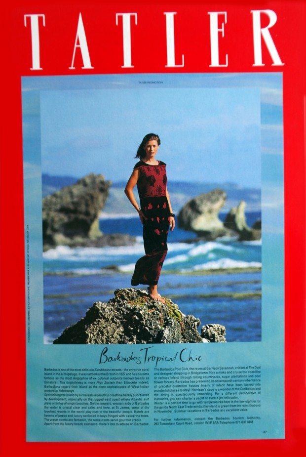 Cameo Devore Dress - Tatler - AW 1993